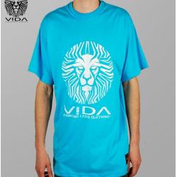 VIDA - Lion head